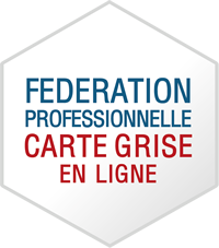 Professionnel automobile